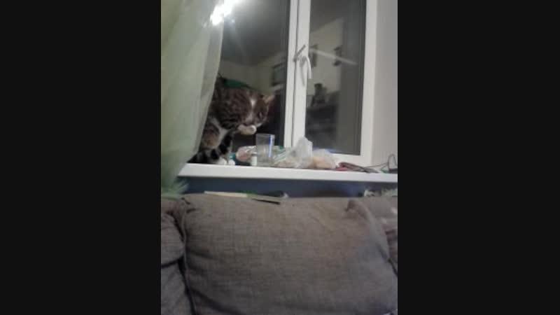 Video-2014-10-04-23-36-27.mp4