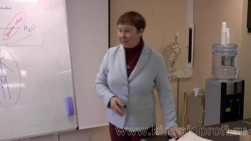 Мануальное мышечное тестирование. Теория. проф. Васильева Л.Ф.