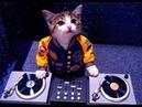 DJ FEDERER feat TWINS Djurdjevdan REMIX 2012