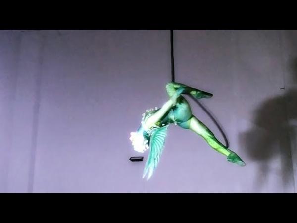 Dragon aerial hoop Ksenia Vorobyeva - Franco Dragone Show