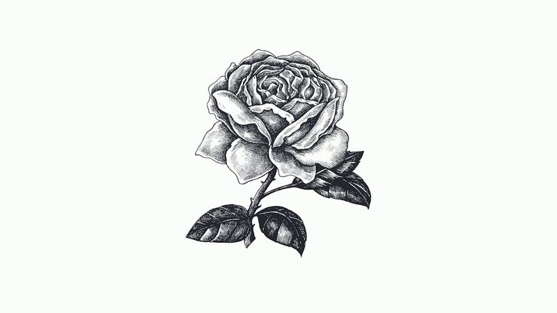 Dissolution | Ciara x Mila J x Kehlani Type Beat | Hip-Hop x RB Instrumental