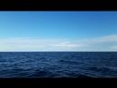 Коктебель море, релакс