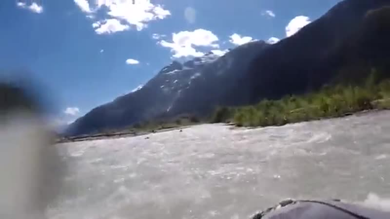 Kayaks grizli bear