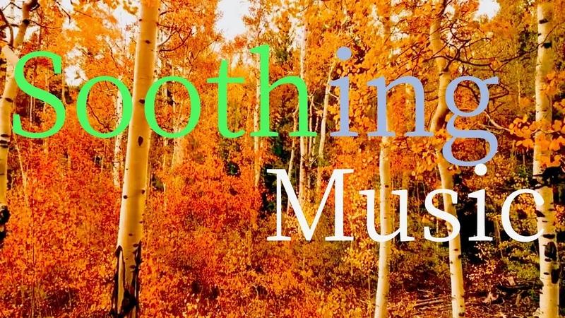 Relaxing Sleep Music - Beautiful Autumn Scenes - Back Ground Music For Sleep, Study, Work