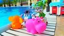Robocar Poli havuzda oyuncakları kurtarıyor. Su oyunları.