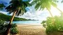 «Лучшая награда в Раю!» Всем смотреть! Мухаммад Хоблос