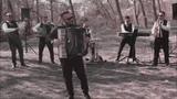 BORKO &amp TIGROVI - tigar KOLO (NOVO 2018)