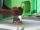 152 Вьетнам Нячанг Уличная еда мороженое делает шпателем Vietnam Nha Trang ice cream makes a spatula