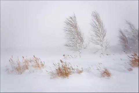 Оккупированный Луганск замела снежная буря (видео)