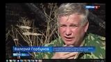 Черные лесорубы безжалостно уничтожают даже реликты