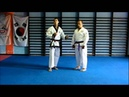 Low block - Ha Dan Mahk Ki - Tang Soo Do