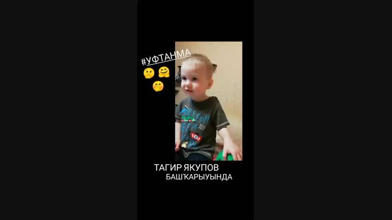 InShot_20190220_191728848.mp4