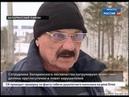 В Иркутской области идёт большая проверка лесничеств