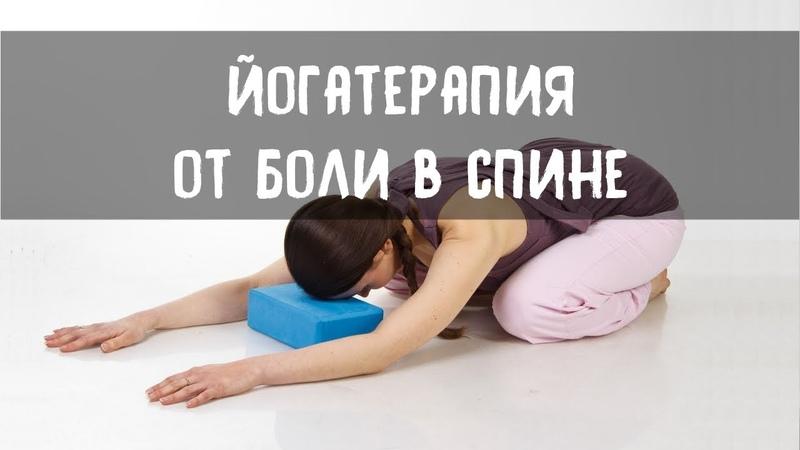 Йога против боли в спине (самые эффективные техники, теория и практика).