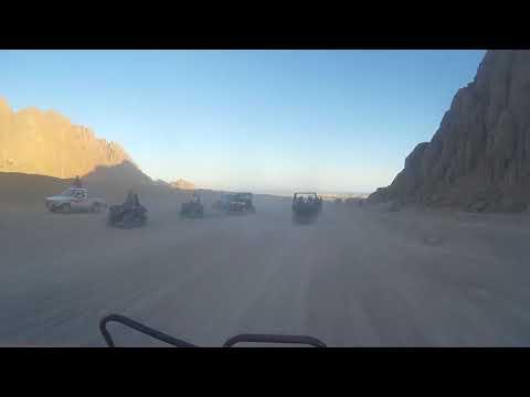 Движуха в пустыне
