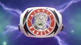 Meow meow Rangers (go go power cats)