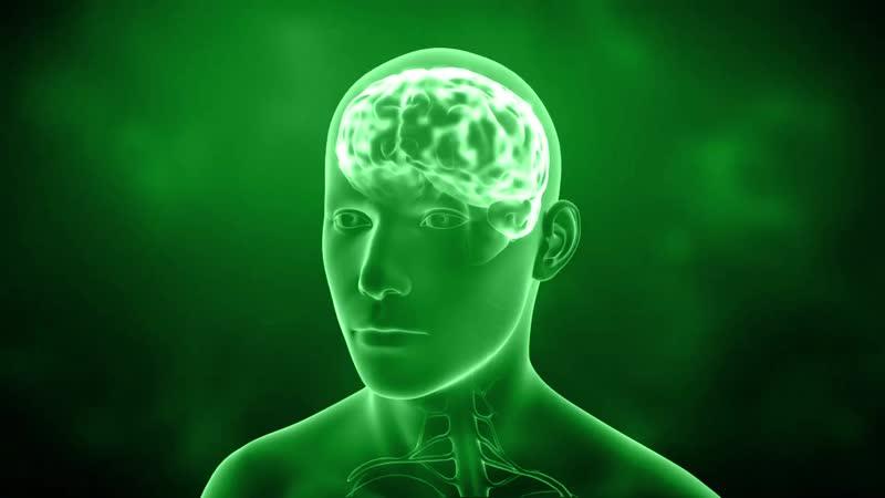4Life Трансфер Фактор® Реколл™ для поддержки мозговой деятельности.mp4