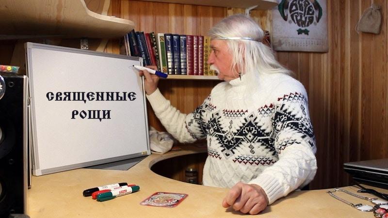 9 СВЯЩЕННЫЕ РОЩИ Александр Тюрин в АсБорге