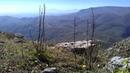 Высокогорные ромашки на высоте 2 500 видно Шунудаг горы над селом Танты Акушинскиий район