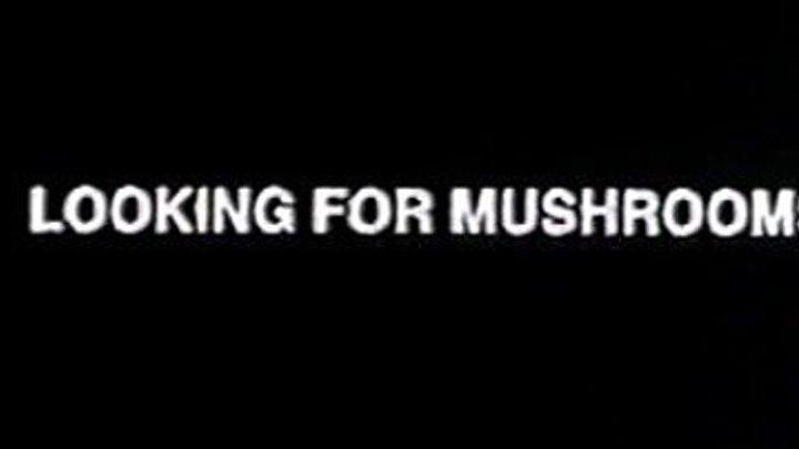 Bruce Conner - Looking For Mushrooms (1967) | Full 14min version |