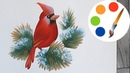 How to paint Northern cardinal by a flat brush, paint a bird