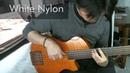 Labella Black nylon VS White nylon strings fretless bass