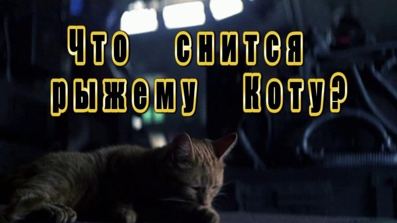 Сон рыжего кота Джонси