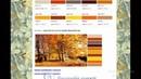 как определить основные цвета на картинке