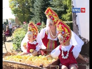 В Ельце прошёл IX  Межрегиональный событийный туристский фестиваль  «Антоновские яблоки»