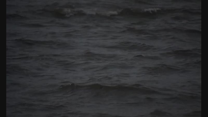«Чистый, бритый» _1993_ Режиссер_ Лодж Х. Керриган
