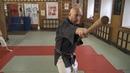 Старинное боевое искусство. Матаёси Кобудо. Семинар Андреа Гуарелли