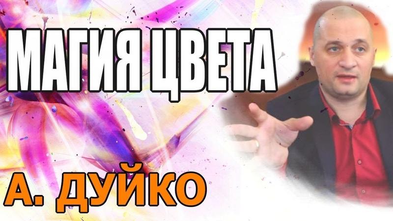Цветовая магия: одежда, цвет волос и т.д. Андрей Дуйко школа Кайлас