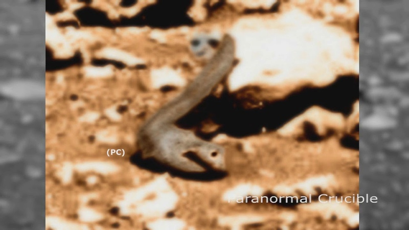 Two Clearly Designed Objects Found On Mars