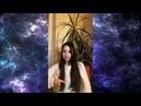 Секреты управления реальностью. И какова роль Вселенной и Бога. Запись эфира в Инстаграм от 13.01