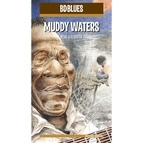 Muddy Waters альбом BD Music Presents Muddy Waters