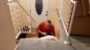 Vea la cacatúa que se comporta como un perro cuando su dueño llega a casa