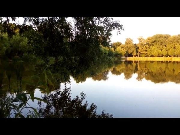 Кёниг-68. Озеро Летнее, Балтрайон, Калининград – лето