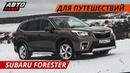Что по динамике, комфорту и безопасности? Subaru Forester 2019   Своими глазами