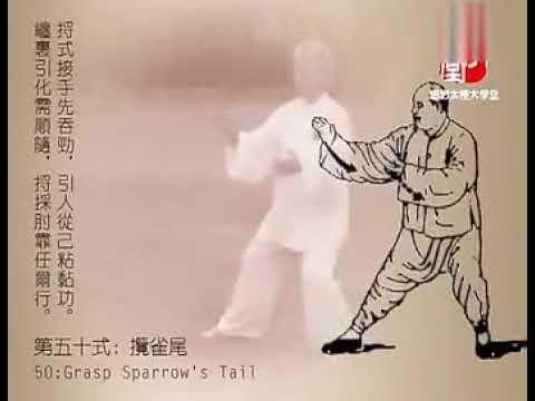 KOU-楊式太極拳85式(扎西) /楊 澄甫写真参照