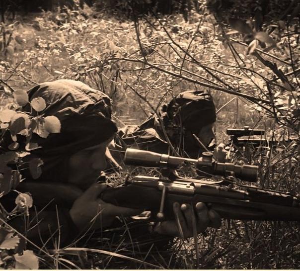 О СНАЙПЕРСКОЙ ВОЙНЕ Горный егерь Михаэль Загер: Если бы русские плохо стреляли, у нас не было бы столько потерь. Русских снайперов мы боялись. Тотальное превосходство советских снайперов над