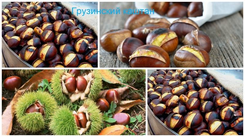 Как правильно приготовить каштаны. Грузинские каштаны. Georgian chestnuts. ქართული წაბლი.