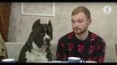 «Хорошо сидим»: Павел и его стаффордширский терьер Чак / Сарафан-шоу