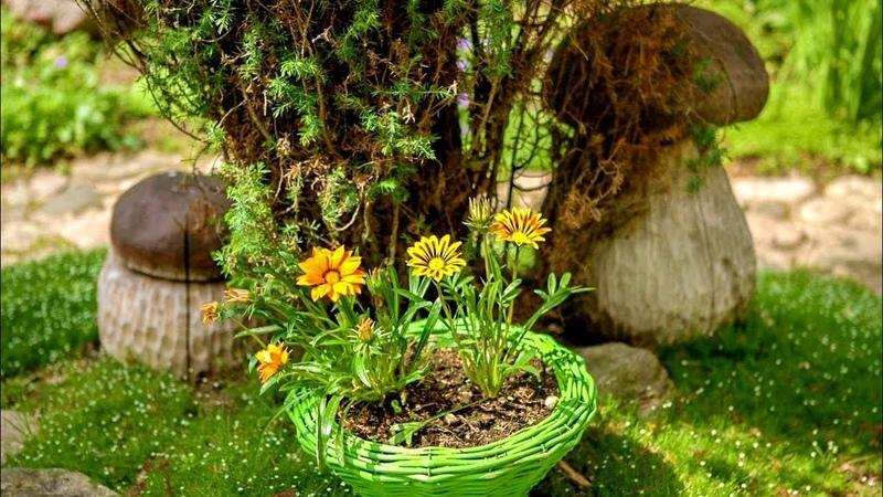 36 Удивительных идей для садового участка 36 ideas for a country house A Video