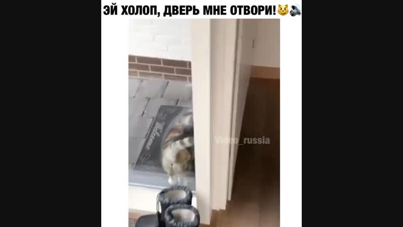 Эй холоп, дверь мне отвори😂