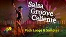 Salsa Groove Caliente samples Loops 🎶 free
