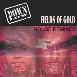 Down Low альбом Fields of Gold (Remixes)