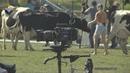 В Павловском Посаде прошли съемки художественного фильма «Стрельцов»