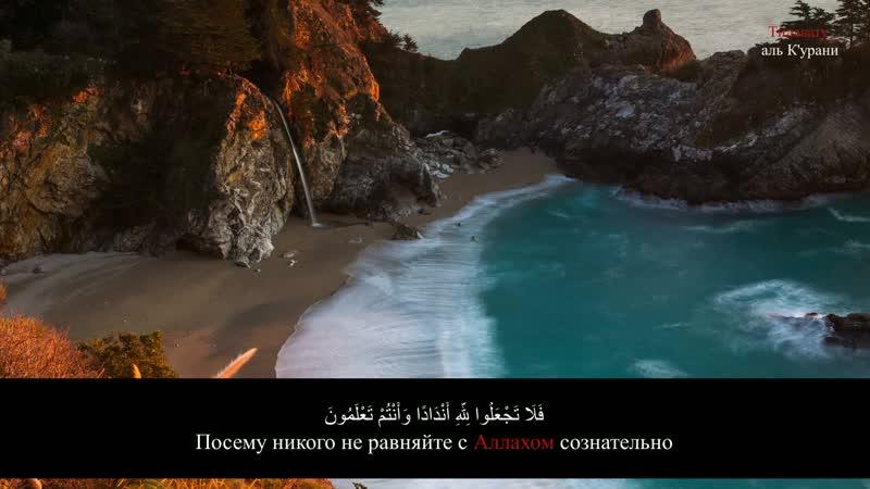 Сура 2 Аль-Бакара 21-24 Муса аш-Шишани