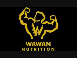 Скотт Эдкинс - представитель WAWAN Protein