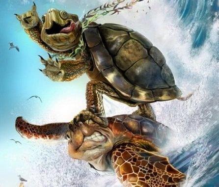 Черепаха. В детстве очень любил глядеть мультики про Черепашек Ниндзя. Ну а кто не любил А недавно передачу по телевизору про черепах посмотрел. Захотелось купить. Купил. Забавная вроде тварь.